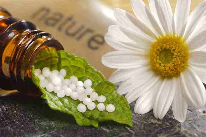The Miracle of Homeopathy